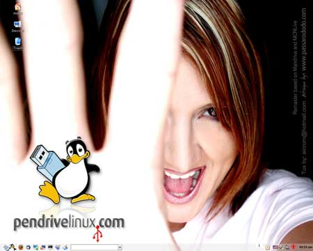 PendriveLinux 2008
