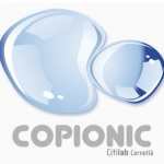 CopioNIC: detectar plagios en Internet
