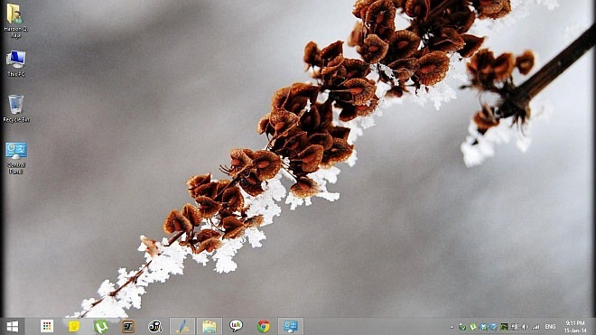 Winter Garden Theme for Windows 8.1